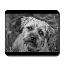 Border Terrier Dog Mousepad