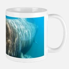 Basking shark Mugs