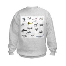 Planes and Jets Sweatshirt