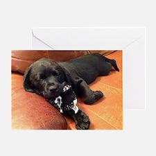 Black lab puppy Greeting Card