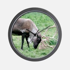 Caribou with Large Antlers Wall Clock