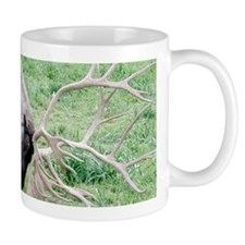 Caribou with Large Antlers Mugs