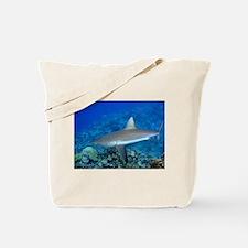 Grey Reef Shark Tote Bag