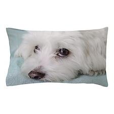 Cute Coton de tulear cartoons Pillow Case