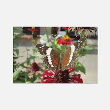 mariposa Rectangle Magnet
