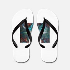Freedom Within Chaos.... Flip Flops