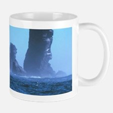 Cape Flattery Mugs