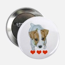 "Jack Russell Terrier Puppy 2.25"" Button (10 pack)"