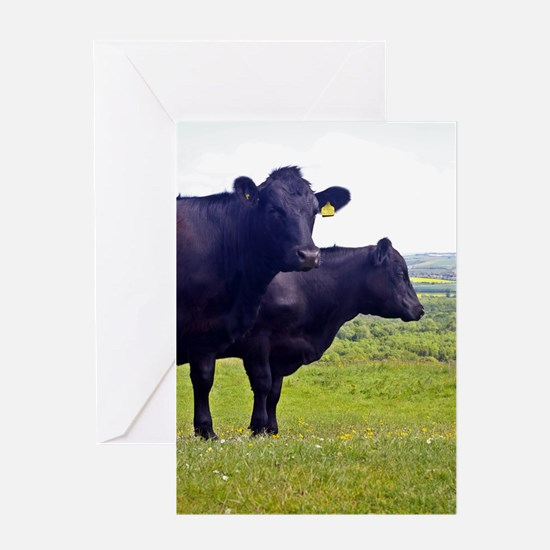 Cley Cows II - Original Greeting Cards