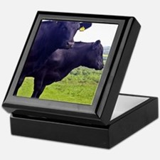 Cley Cows II - Original Square Keepsake Box