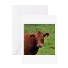 Cow Boogers - Original Greeting Cards