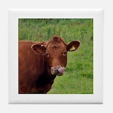 Cow Boogers - Original Tile Coaster