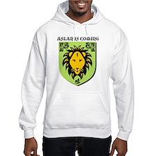 Unique Lion witch wardrobe Hoodie