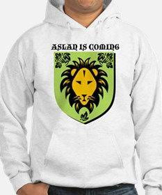 Cute Lion witch wardrobe Hoodie