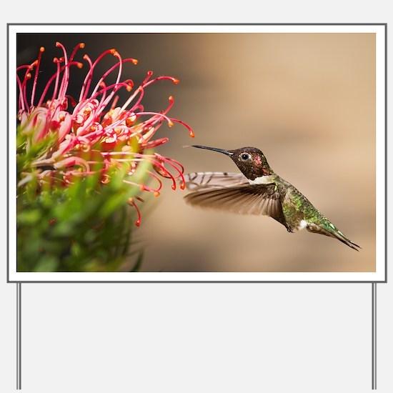 Cute Hummingbird Yard Sign