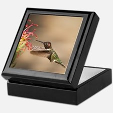 Cute Hummingbird Keepsake Box