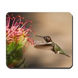 Hummingbird Classic Mousepad