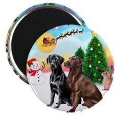 Cute Pets chocolate lab Magnet