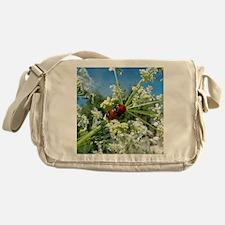 luck beetle Messenger Bag
