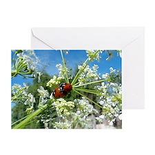 luck beetle Greeting Card