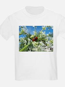 luck beetle T-Shirt