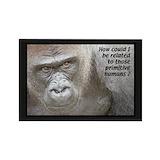 Gorillas 10 Pack