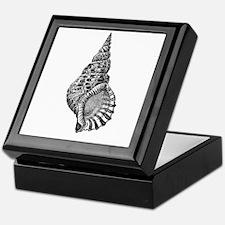 Black and white Conch shell Keepsake Box
