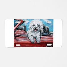 Aluminum License Plate