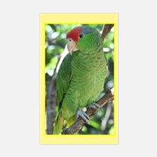 Parrot Rectangle Decal