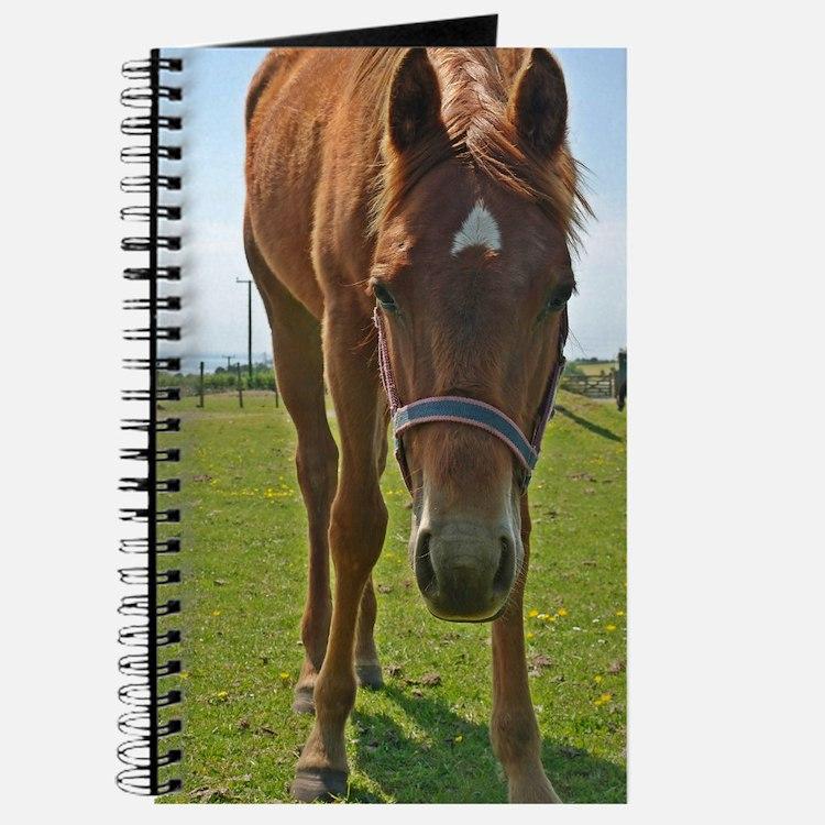 Horse Fancy - Original 6x9 - Journal