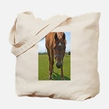 Horse Fancy - Original 6x9 - Tote Bag