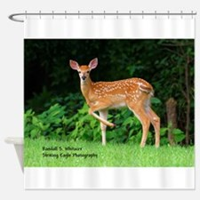 Victor's Fawn Shower Curtain