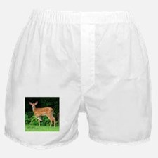 Victor's Fawn Boxer Shorts