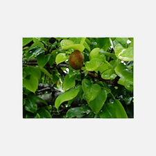 Fig Tree 5'x7'Area Rug
