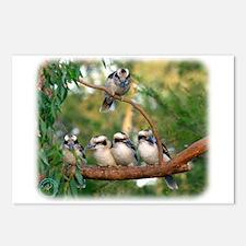 Kookaburra 9Y172D-004 Postcards (Package of 8)