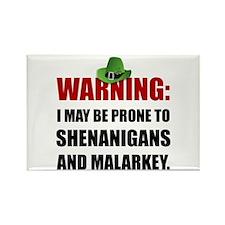 Shenanigans And Malarkey Magnets