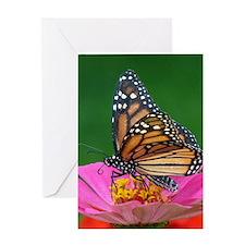 Royal Monarch Greeting Cards
