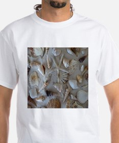 Beautiful Seashells T-Shirt