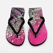 Dandelion_2015_0709 Flip Flops