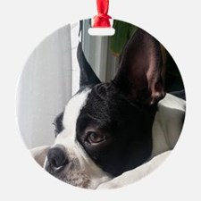 Thoughtful Boston Terrier Ornament