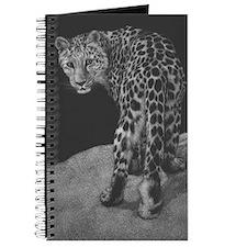 Amur Leopard Journal