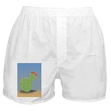 tobias_Cactus Boxer Shorts