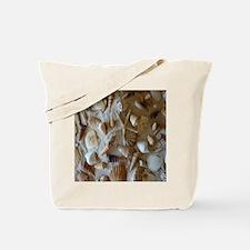 Beautiful Seashells Tote Bag