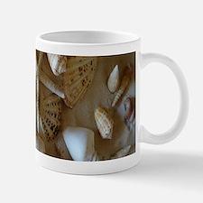 Beautiful Seashells Mugs