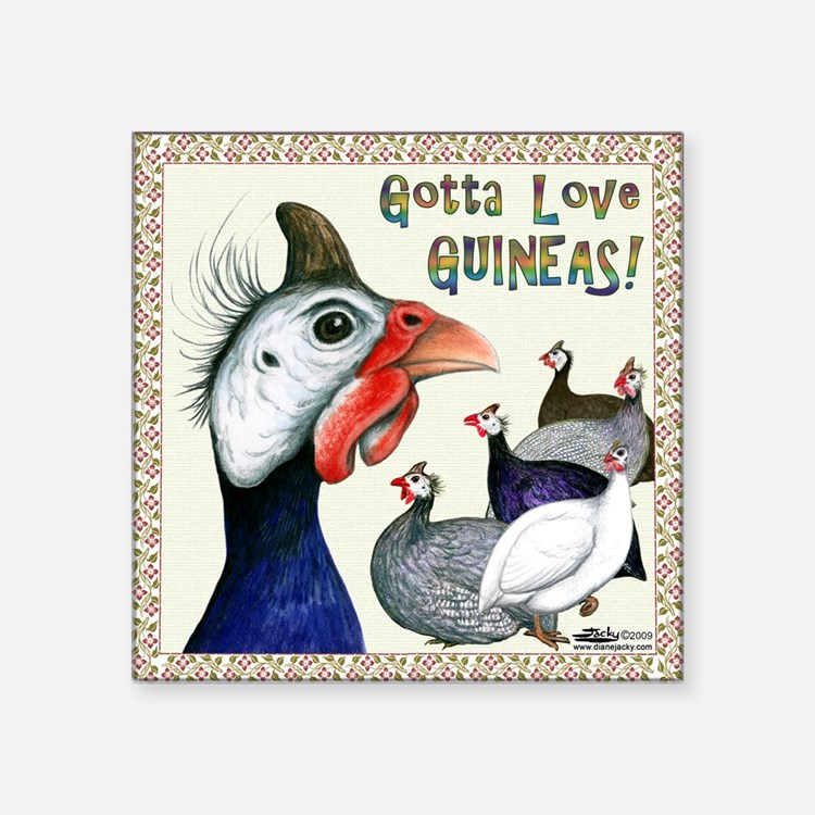 Gotta Love Guineas! Sticker