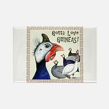 Gotta Love Guineas! Magnets