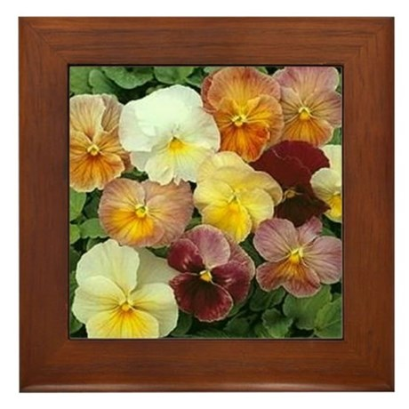 MORE PANSIES Framed Tile