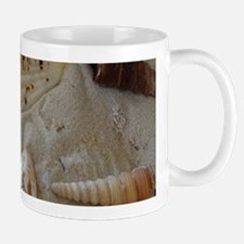 Beautiful Seashells Mugs