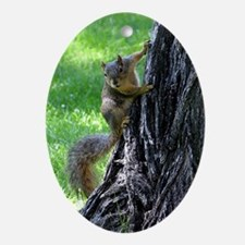Squirrel on Tree Oval Ornament