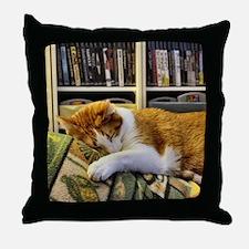 Cute Sleeping cat Throw Pillow